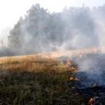 Zabranjeno poljenje strnih useva i paljenje vatre na otvorenom