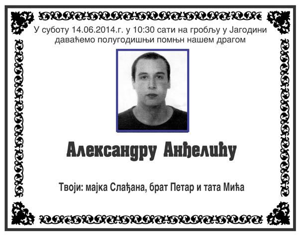 Aleksandar Andjelic