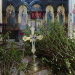 Osveštane vrbove grančice u jagodinskim crkvama