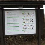 Postavljena nova info tabla o pticama u parku