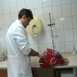 Trihineloza u Pomoravlju: Dva zaražene svinje ove godine