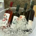 Održan treći Vino fest u Rekovcu